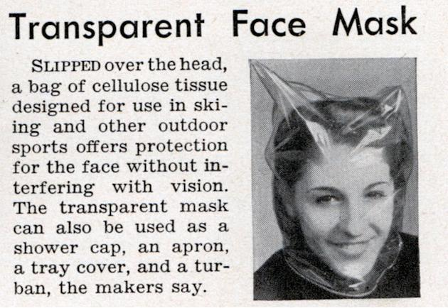 Transparent Face Mask