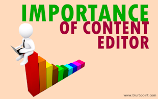 A Successful Content Creation Campaign, With a Content Editor image editor2