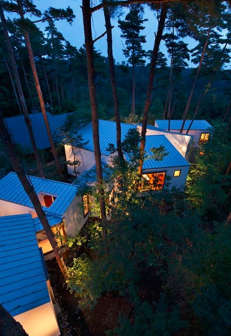 forest house raised architecture