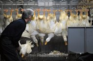 A masked staff member of a poultry market sorts out ducks in Taipei on April 26, 2013. A 61-year-old woman from northern China was confirmed Saturday as having contracted the deadly H7N9 bird flu virus, state media reported