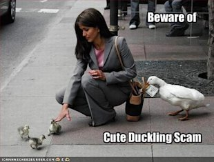 Confessions of a Reformed Black Hat PPC Marketer: My CPC Arbitrage Story image beware of the cute duckling scam