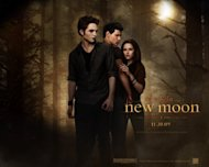 Photo from Twilight website