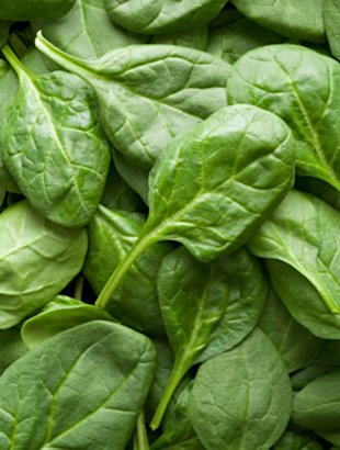 Spinach and other leafy greens are among the top anti-aging foods for women.