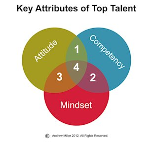 The 3 Attributes to Look for in Top Talent