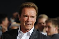 "Arnold Schwarzenegger will resume the role of ""Conan the Barbarian"" in 2014"