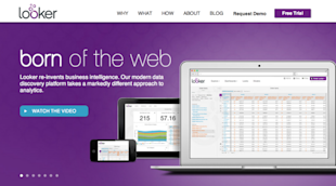Website Review: 10 Hottest B2B SaaS Companies in 2014 image looker resized 600
