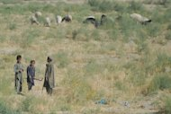 Young Afghan shepherds are pictured in restive Helmand Province of Afghanistan in June, where two US Marines have been killed in an attack on a heavily fortified airfield in Afghanistan where Prince Harry is deployed.