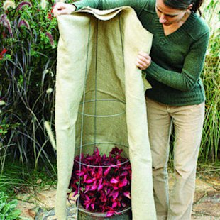 Drape fabric around plants