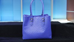 Dress Barn's blue ostrich faux leather bag
