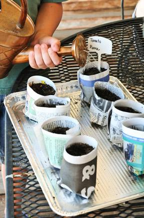 Plant Seedlings Using Recycled Newspaper