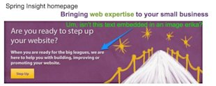 Don't Do That: Important Text Hidden in an Image image DC Web Design Maryland Internet Marketing Spring Insight 600x240