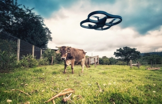 California Man Must Pay for Gunning Down His Neighbor's Drone