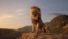 否想動物的非洲伊甸