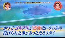 怕蟑螂的注意!日本「這地區」看不到