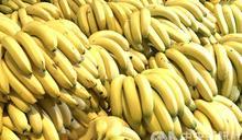 日本實驗結果 吃香蕉有助家庭和諧
