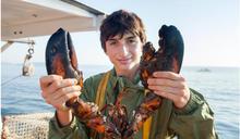 就怕吃不到波士頓龍蝦!美國龍蝦重鎮「緬因州」如何嚴格管控捕撈、確保永續?