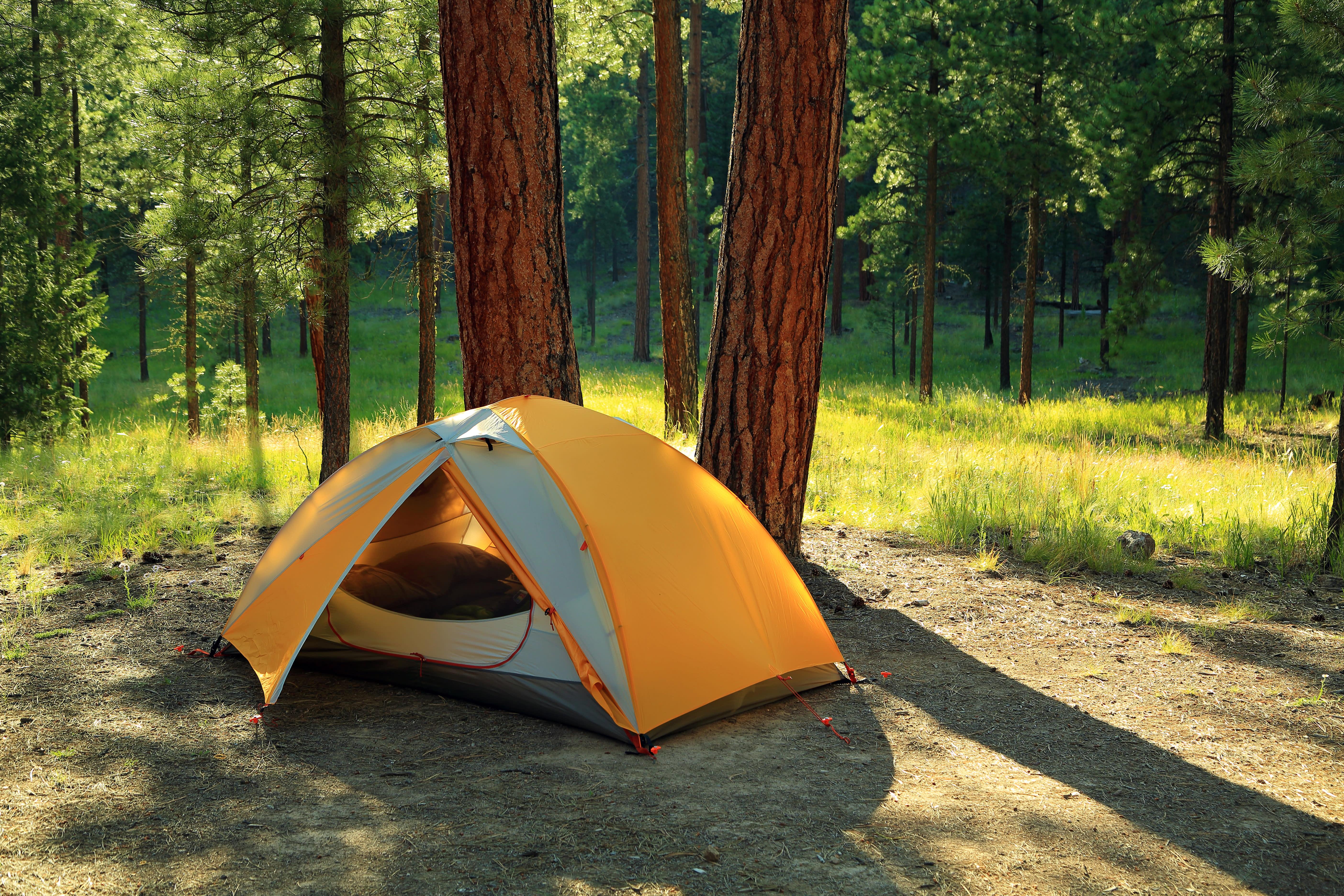 全台露營區合法率不到5%,您的看法是?