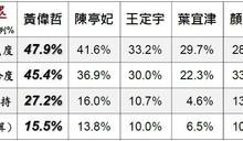 民進黨台南市長初選 美麗島民調黃偉哲領先群雄