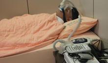 台大高材生頭痛8年 睡眠呼吸中止症惹禍