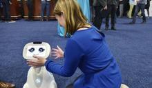 美CES將登場 聲控虛擬助理料成焦點