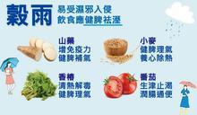 穀雨養生》專家推薦「神仙之藥」等4食材健脾胃、祛溼