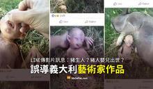 【謠言】豬生人的影片?豬人嬰兒出世?義大利藝術家作品誤導
