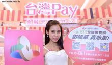 台灣Pay金融卡支付 明年底支援銀行達27家