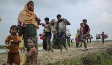 若開邦危機:緬甸邁向衝突深淵的下一步