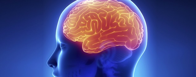 How to keep your brain sharp (Thinkstock)