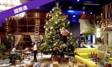 全球最貴!這棵聖誕樹要4.1億