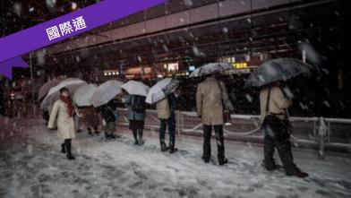 禁不起暴雪摧殘 東京癱瘓了